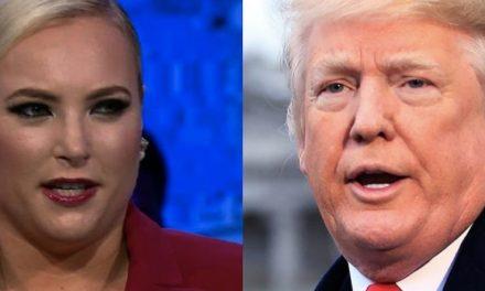 DEMOSTRADAS Dos Cosas: la Inmoralidad de los Republicanos y Que la Hija de McCain es Una Hipócrita