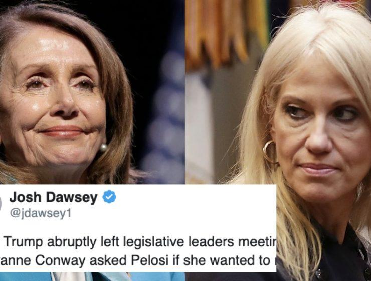 Sonada Bofetada Con Guante Blanco de la Vocera Pelosi a la Arpía Presidencial, Kellyanne Conway