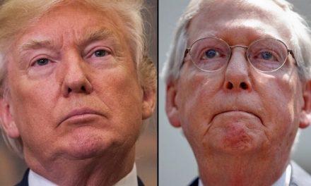 Sigue Despejándose el Campo. Prominente Senadora Republicana no Buscará Reelección