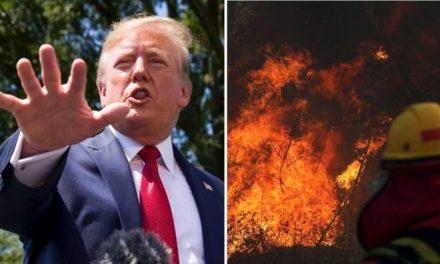 Ya Sabías de los Incendios del Amazonas, Pero no del Papel de las Corporaciones Estadounidenses Allí