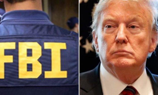 Controversiales y Manipulados: Acaban de Filtrarse los Documentos de Terrorismo Doméstico del FBI