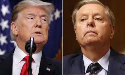 Lindsey Graham se Niega a Leer las Transcripciones de los Testimonios Para la Destitución. Ilegal e Inmoral