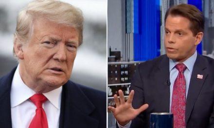 """¿Recuerdan al """"Escaramujo"""" Que Duró Sólo 7 Días con Trump? Ahora Está Pronosticando Que ÉL Renunciará"""