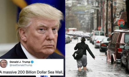 """Para Trump un """"Muro Marino"""" de Protección es """"Costoso y Tonto"""". Claro, no Pararía Inmigrantes (el Otro Tampoco)"""