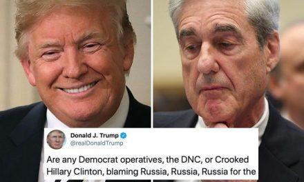 Ya no Sabe Qué Otra Estupidez Decir: Ahora Quiere Otra Investigación de Mueller. Esta Vez Sobre los Demócratas