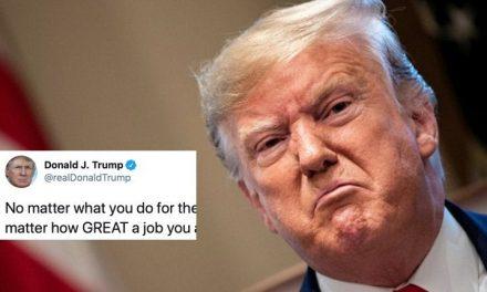 Trump Explota: Resulta Que Él Hace un GENIAL Trabajo y Son los Demócratas y Nosotros Quienes no lo Reconocemos
